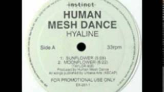 Human Mesh Dance - Counterglow