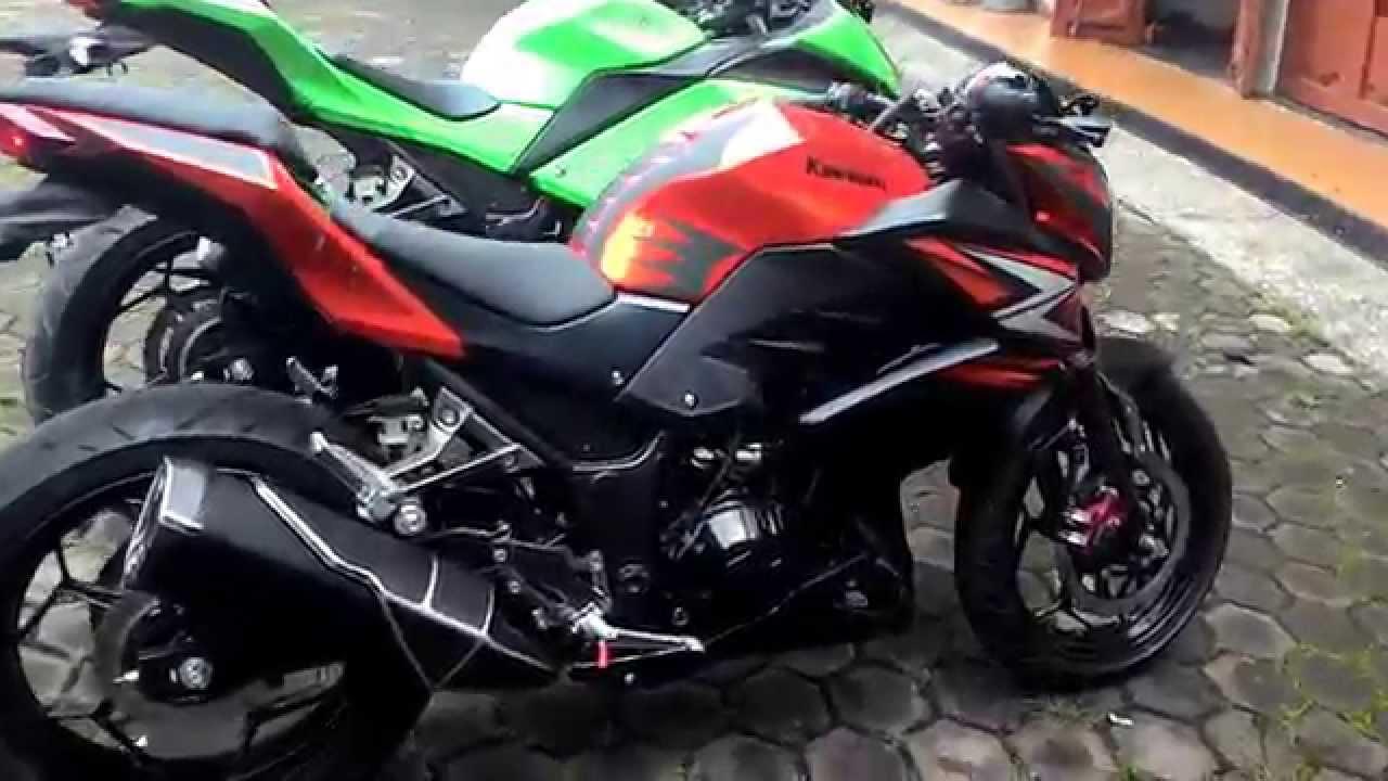 Kawasaki Z250 Vs Kawasaki Ninja 250 Youtube