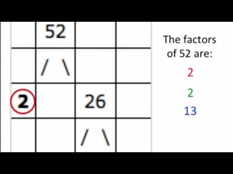 what are the factors for 52