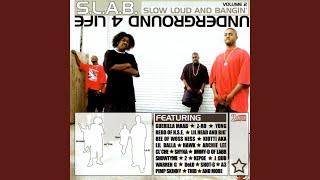 Life Of A Thug Nigga (feat. Shyna, Lil