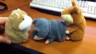 Приколы. Смешное Видео с Говорящими Хомяками (игрушки).