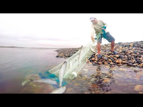 Larger smooth-cut fishery