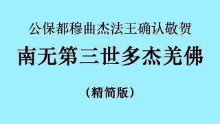 十七世噶瑪巴的上師ー公保都穆曲杰法王确认敬贺 南无第三世多杰羌佛 (国际佛教僧尼总会严正声明20210208) 精简版 720p