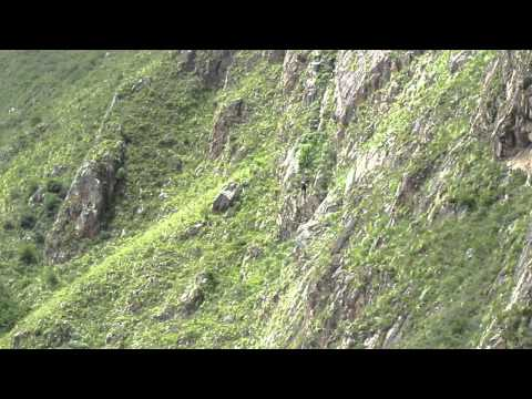 Twin zip line for 500 metres! Near Cusco.