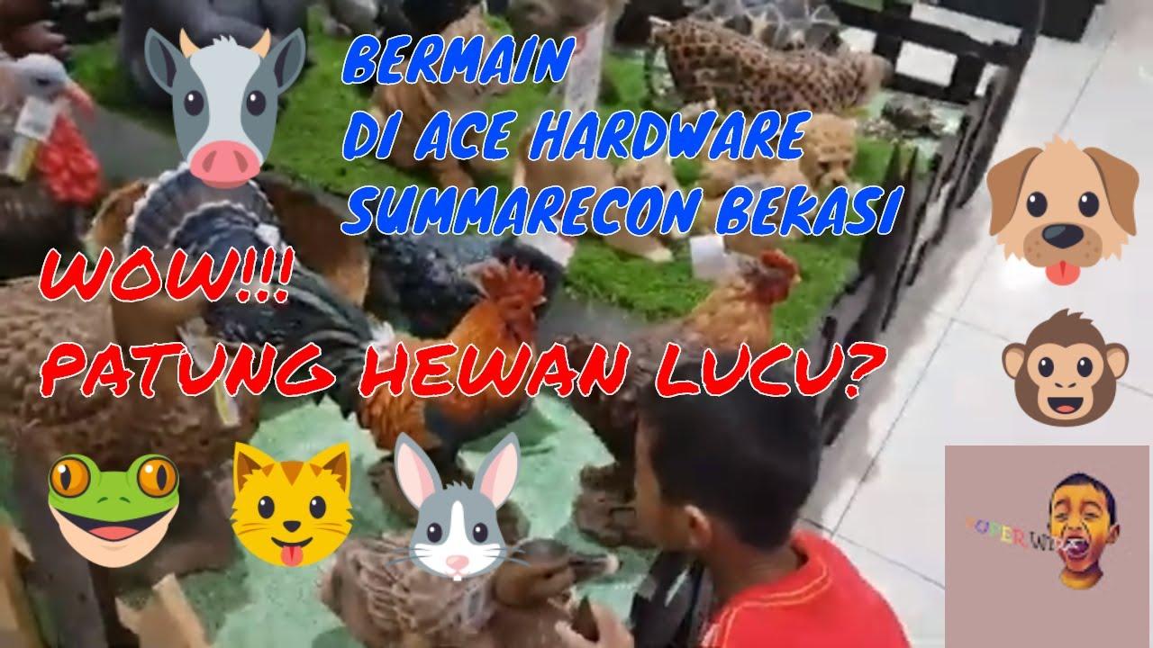 Ayo Kita Belajar Dengan Binatang Di Summarecon Mall Bekasi
