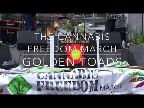 """Golden Toads """"Live"""" in Downtown Seattle May 5th 2018"""