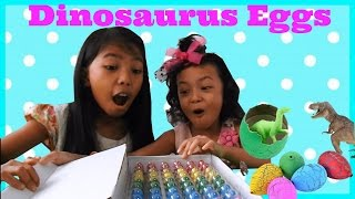 Mainan Anak Telur Dinosaurus |Dinosaur Eggs Unboxing and Hatching