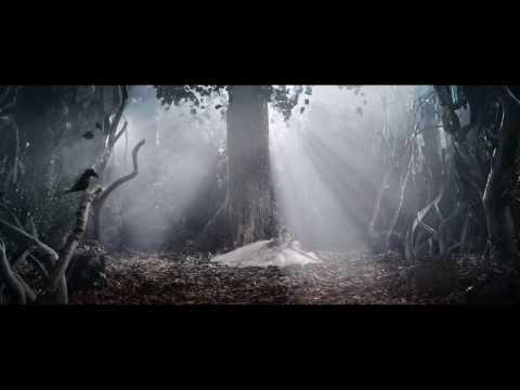 LA SYLPHIDE (a performance by Johan Kobborg) - full trailer