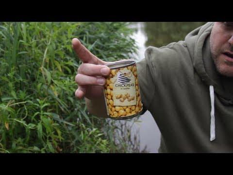 Chick Peas - Bait   Fishing Republic