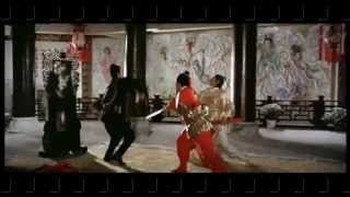 Fighting Scene Tien Ya Ming Yue Dao (chinese)