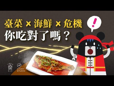 你吃的魚來自哪裡?小心別吃到這些「暗黑。海鮮料理」!|臺灣吧 Taiwan Bar