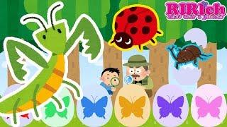 【昆虫】たまごのおもちゃアニメ りりちゃんねるの動画では たまごのお...