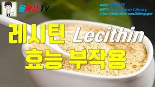 레시틴 Lecithin 7가지 효능, 독성 부작용, 아…