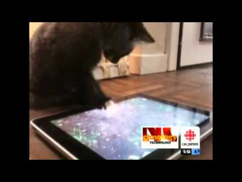 Apps for Pets | CBC