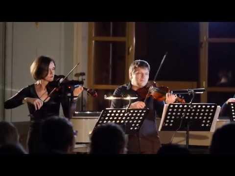 Pratum Integrum = Бах = Бранденбургский концерт №3. Allegro