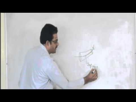 APPG Anatomy Topic 01 ARTERY