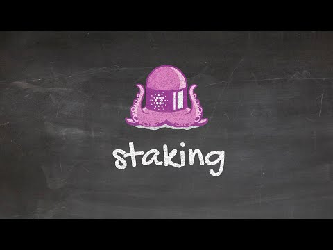 Cardano Blackboard Series #2: What is staking?