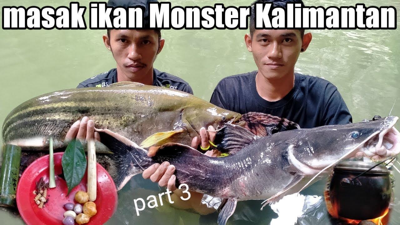 Memasak ikan tapah Monster pedalaman Kalimantan