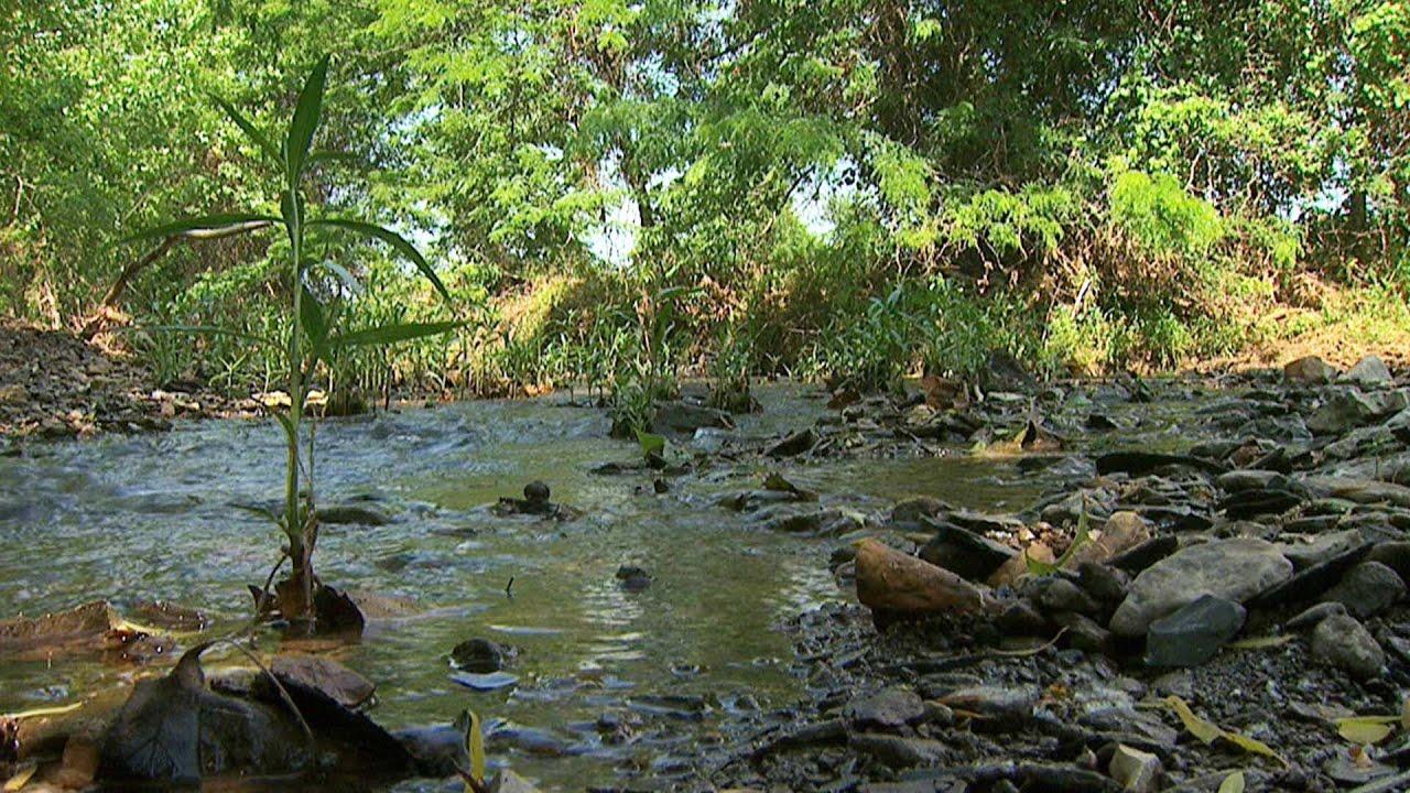natural stream restoration streams