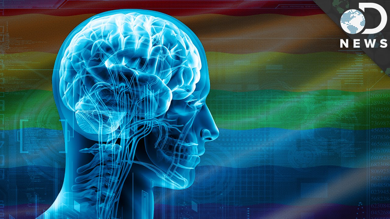 brains and gender Brain rule rundown rule #11: male and female brains are different what's different mental health professionals have known for years about sex-based differences in the type and severity of psychiatric disorders.