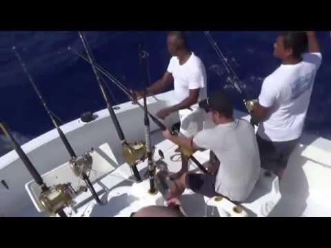 BIG GAME FISHING MAURITIUS TUNA MARLIN DORADO SHARK SPORT FISHER
