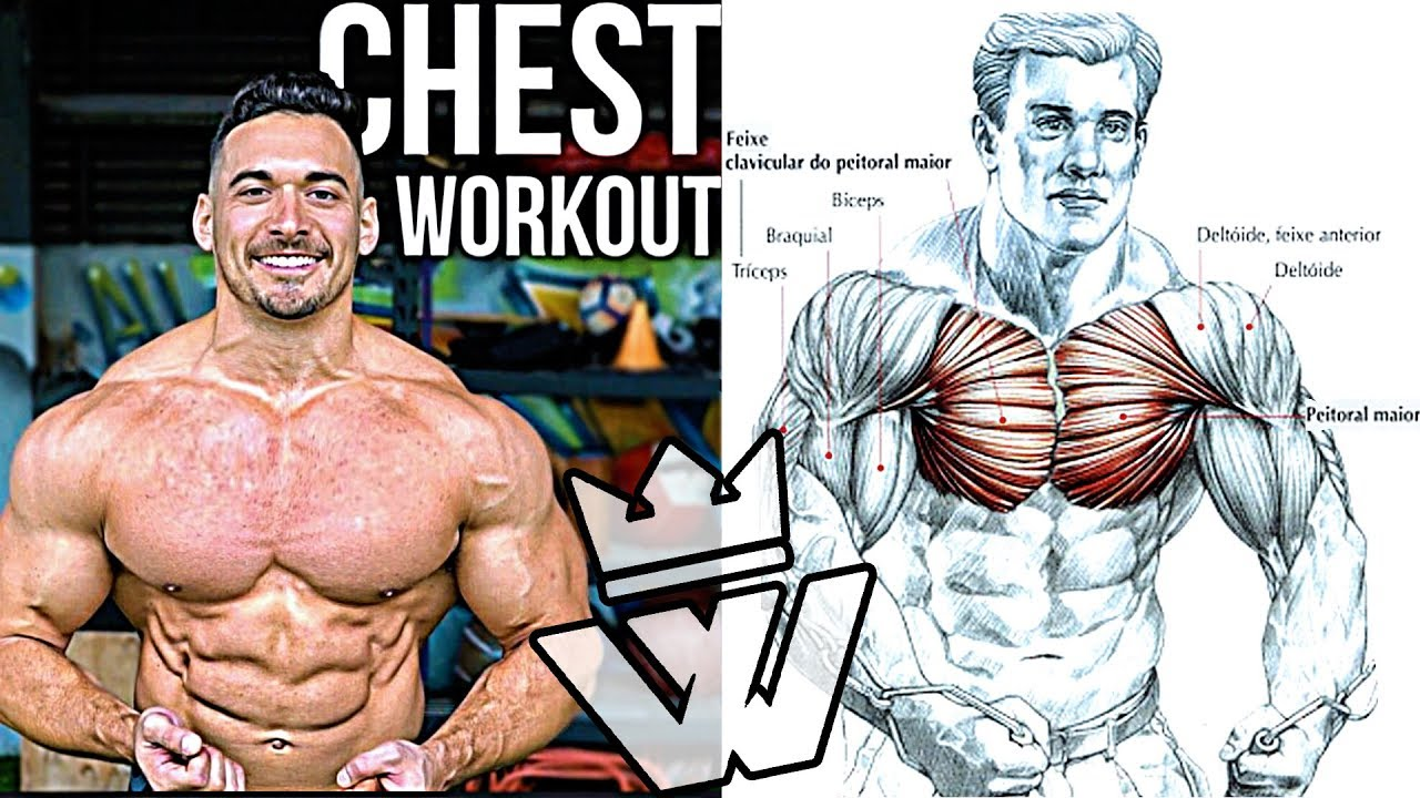 18 CHEST EXERCISES | GYM WORKOUT