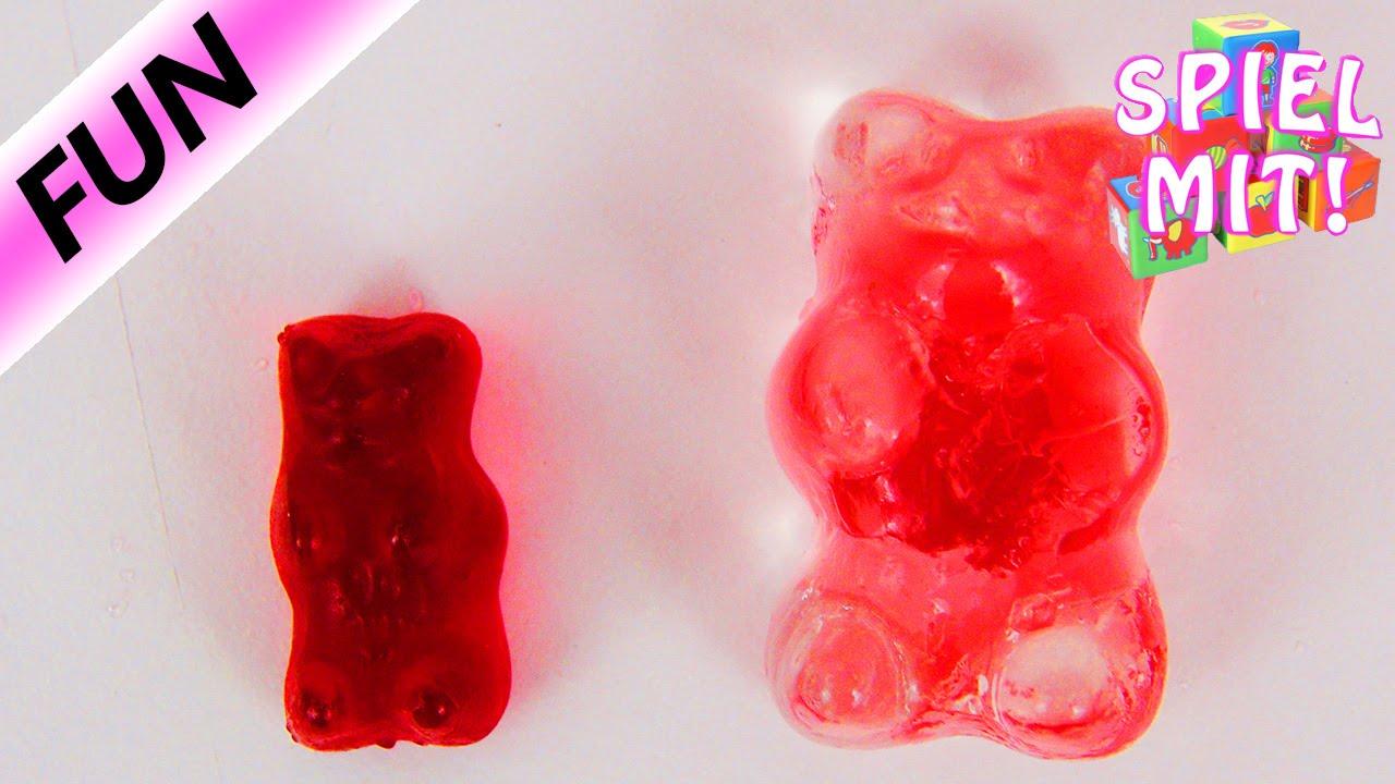 gummib rchen in wasser glibber schleim schleim gummib r nach stunden langzeitexperiment. Black Bedroom Furniture Sets. Home Design Ideas