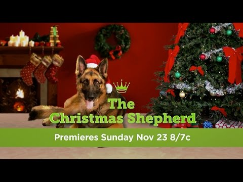 The Christmas Shepherd.The Christmas Shepherd