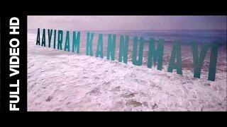 Aayiram Kannumayi - Northern Lights (Official FULL VIDEO)