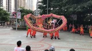 葵青劇院表演  龍獅