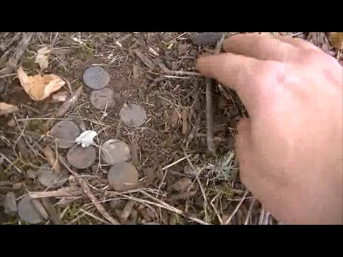 I DIED AND WENT TO COIN HEAVEN! - Metal Detecting August 17th 2014