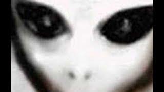 【緊急速報】地球外生命体の代表 グレイとは? いつから目撃?世界各地で確認されているグレイの正体とは thumbnail