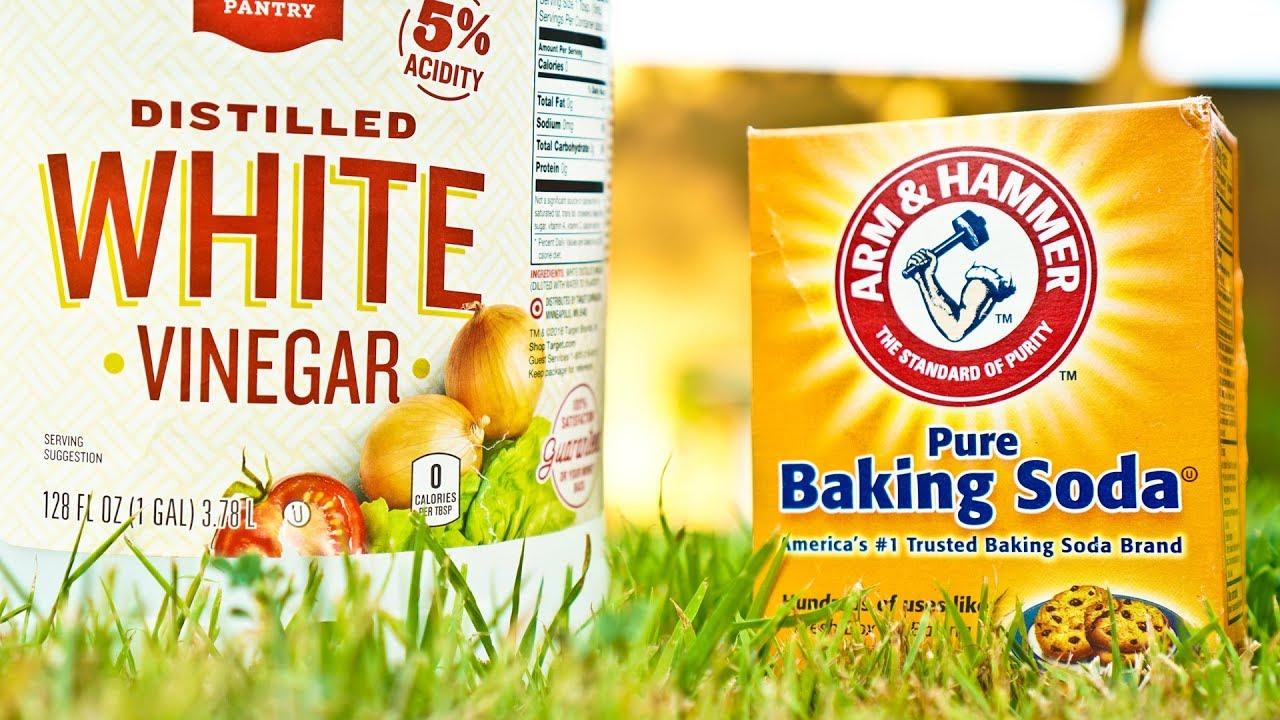 Vinegar vs Baking Soda Weed Killer Comparison