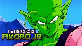 La historia de Pikoro #2 (La era de Pikoro JR)