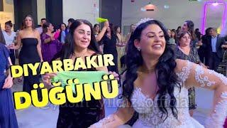 Diyarbakır Düğünü - Yasin Yildiz - Gelin'den muhteşem halay show - Hollanda