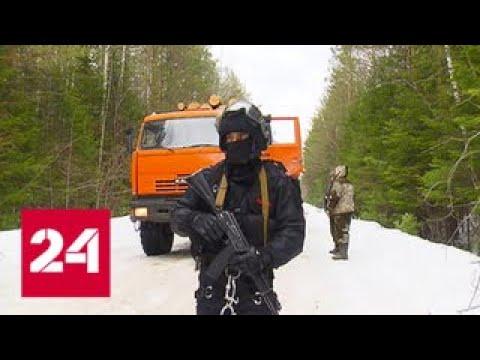 Расследование Эдуарда Петрова. Профессия - лесовор 3 - Россия 24
