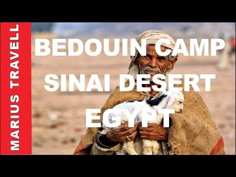 Egypt Sinai Desert Bedouin Camp