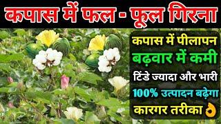 कपास की फसल में फल फूल गिरना | कपास में पीलापन और बढ़वार में कमी | कपास का उत्पादन कैसे बढ़ाएं