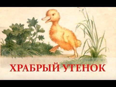 Смотреть мультфильм храбрый утенок алеша