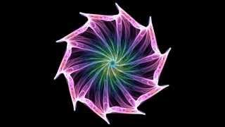 Vishuddha - Parametric