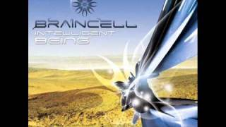 Braincell - Different Time Level