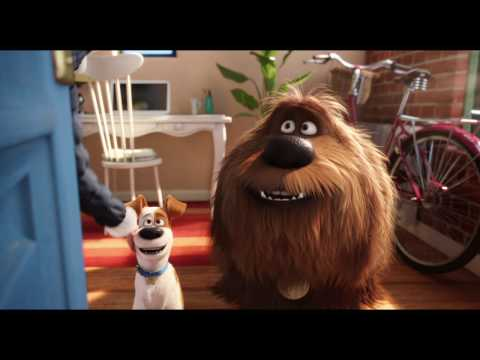 The Secret Life Of Pets in Denmark