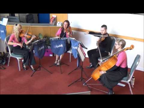 A Thousand Years   Andrelli String Quartet   Centre for Life