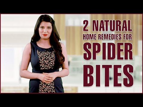 Spider Bites Treatments Removal Get Rid Of Itching Infections