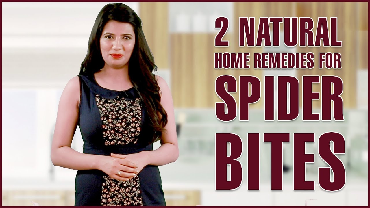 SPIDER BITES TREATMENTS REMOVAL Get Rid Itching
