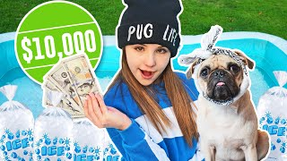 Last To Leave *FREEZING* ICE POOL Wins $10,000 CHALLENGE💰❄️| Piper Rockelle