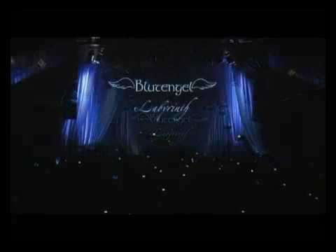 blutengel moments our lives dvd