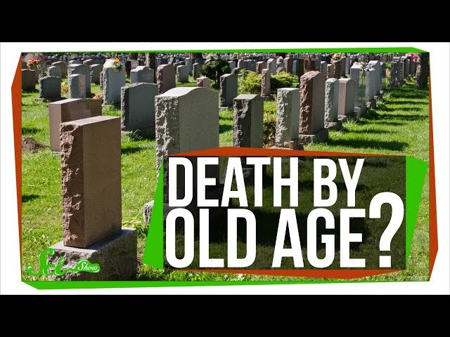 Can You Really Die of Old Age?