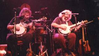 Garcia ~ Grisman - Grateful Dawg