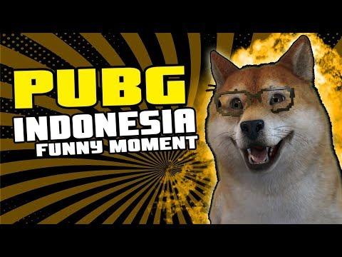 PUBG INDONESIA - KEBODOHAN YANG SULIT DI OBATI (FUNNY MOMENT)